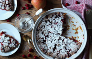 Some Thoughts Lately + (Updated) Cranberry Apple Cake (gluten free, dairy free, nut free, Paleo, vegan)