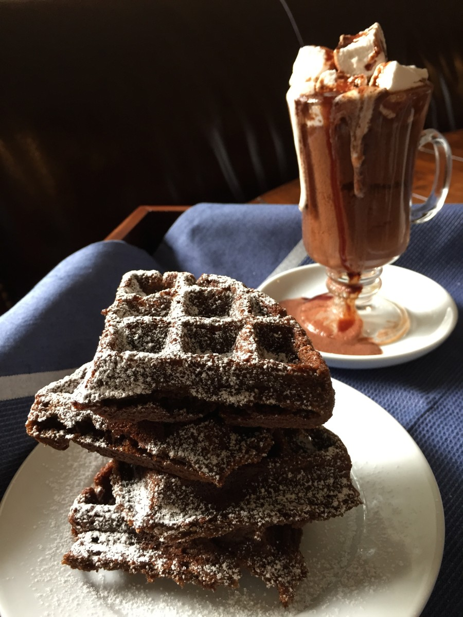 gingerbread waffles gluten free dairy free soy free egg free - from jessica's kitchen