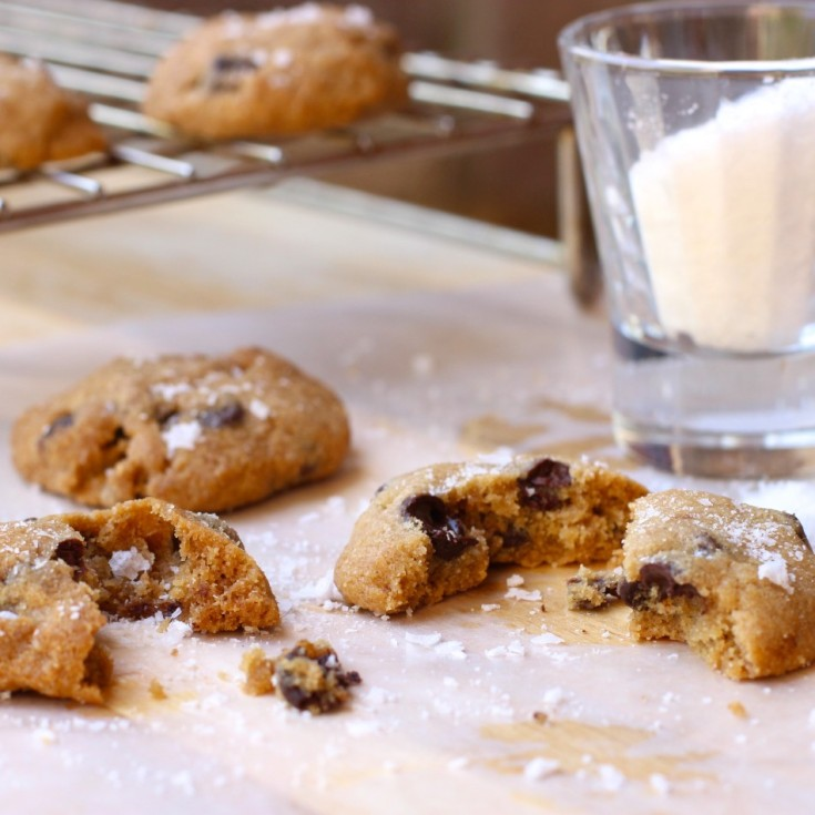 gluten-free-dairy-free-egg-free-chocolate-chip-cookies-fromjessicaskitchen-com
