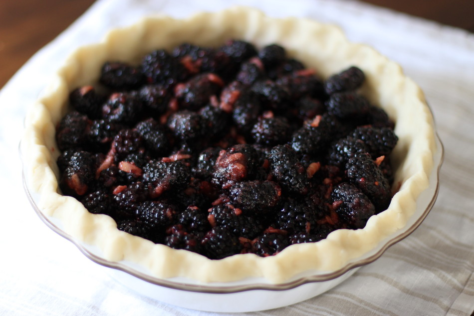 From Jessica's Kitchen Blackberry Pie gluten free dairy free