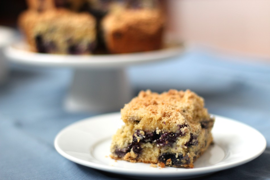 blueberry-cornmeal-cake-gluten-free-dairy-free-from-jessicas-kitchen