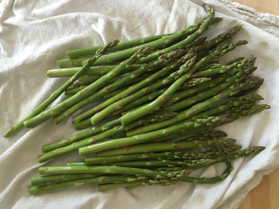 asparagus-with-mustard-dressing-and-poached-eggs-from-jessicas-kitchen-recipe-gluten-free-dairy-free-prep-7